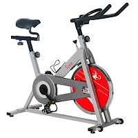 Sunny Health & Fitness SF-B1001 Indoor Cycling Bike Spin Bike in silver or red color, 30 lb flywheel, 4-way adjustable saddle, cage pedals, adjustable height handlebars