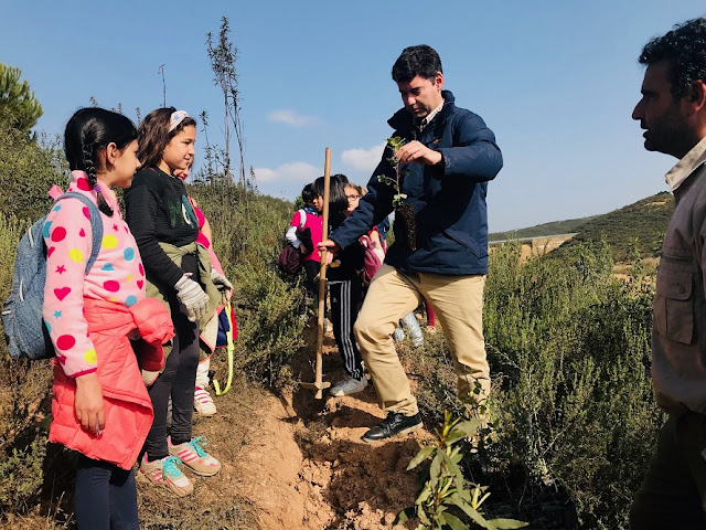 http://www.esvalverde.com/2019/02/plantacion-de-escolares-en-la-dehesa-de.html