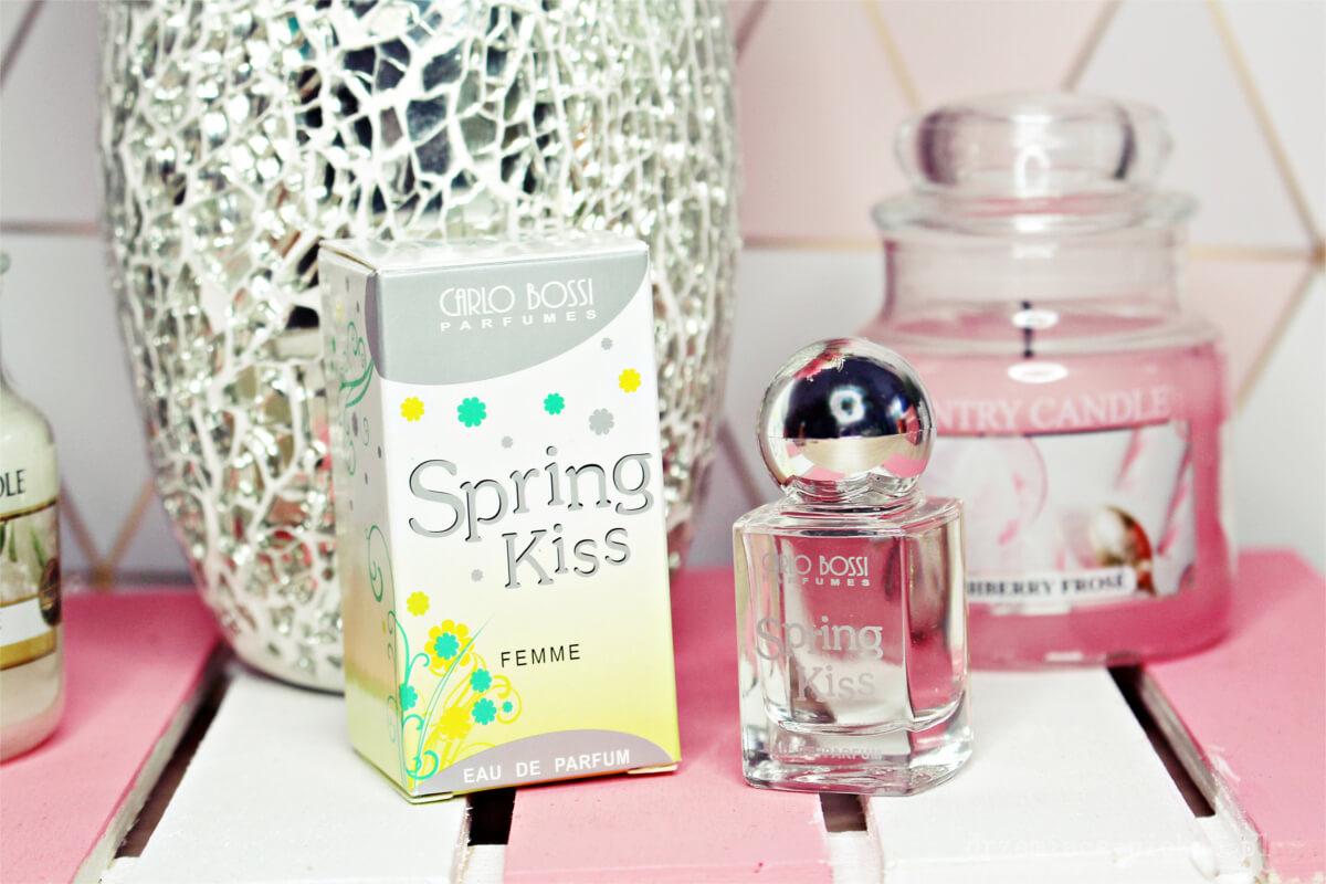 ShinyBox Kwiecień 2019  - Zawartość Spring Kiss
