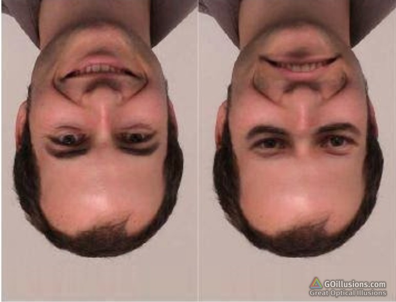 Great Optical Illusions, Funny Photos and Images, Brain ...