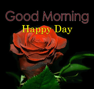 New Good Morning 4k Full HD Images Download For Daily%2B89