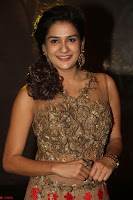 Jenny in brown transparent sleeveless anarkali dress at Shamanthakamani pre release function ~  Exclusive 048.JPG