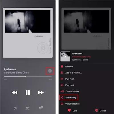 Cara Berbagi Lagu ke Cerita Instagram dari Spotify, Apple Music, dan Lainnya-3
