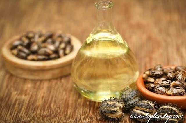 Cách làm lông mi dài và dày hơn từ dầu thầu dầu