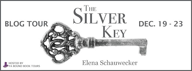 http://yaboundbooktours.blogspot.com/2016/10/blog-tour-sign-up-silver-key-by-elena.html