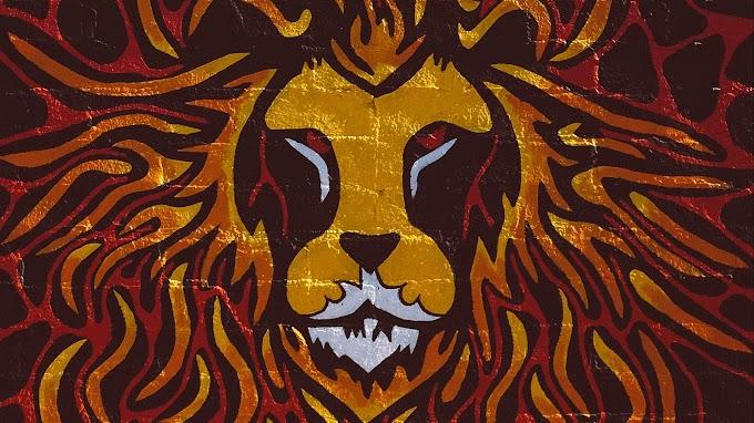 Papel De Parede Arte Grafite Leão