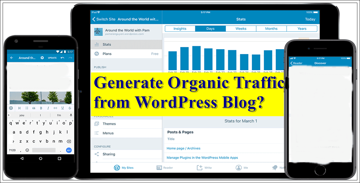 Generate Organic Traffic from Your WordPress
