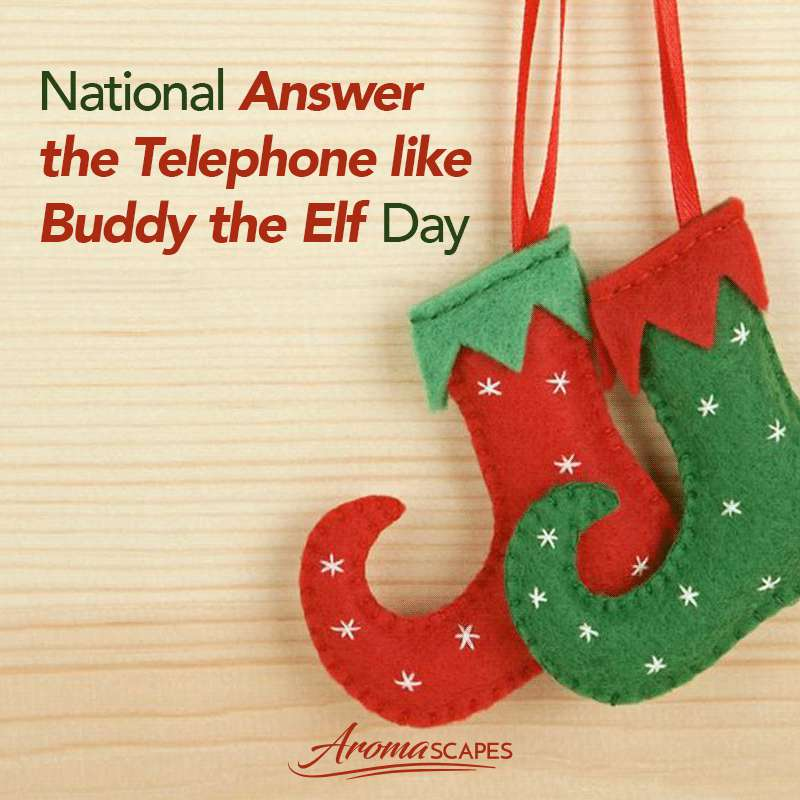 Answer The Telephone Like Buddy The Elf Day Wishes Beautiful Image