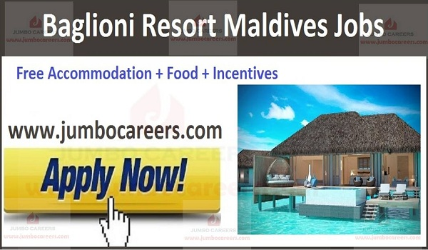 Maldives latest jobs