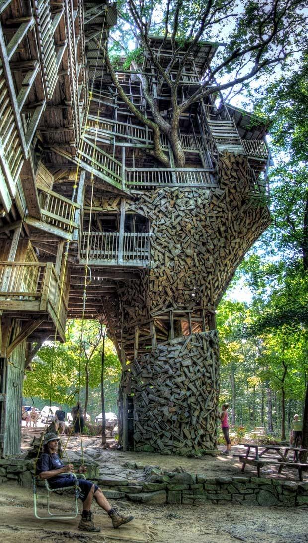 Rumah Pohon Terbesar Di Dunia 8