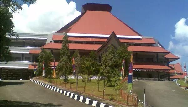 universitas terbaik papua