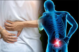 Lower Back Pain And urinary organ Pain