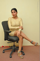 Actress Pooja Roshan Stills in Golden Short Dress at Box Movie Audio Launch  0040.JPG