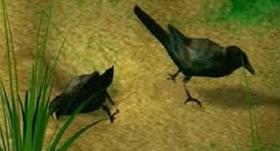 Caïn et Abel et l'histoire du premier meurtre de l'histoire