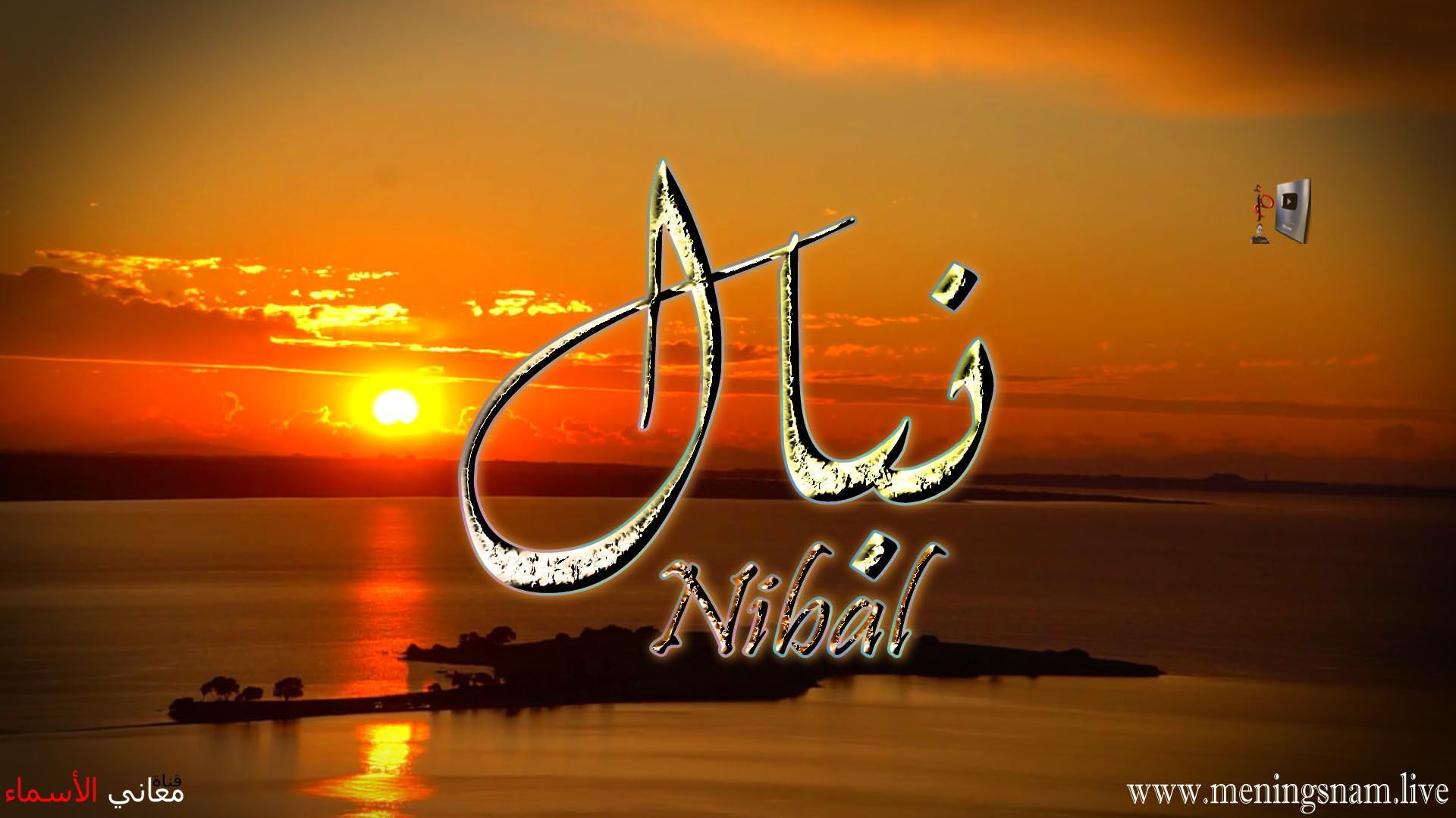 معنى اسم نبال وصفات حاملة و حامل هذا الاسم Nibal