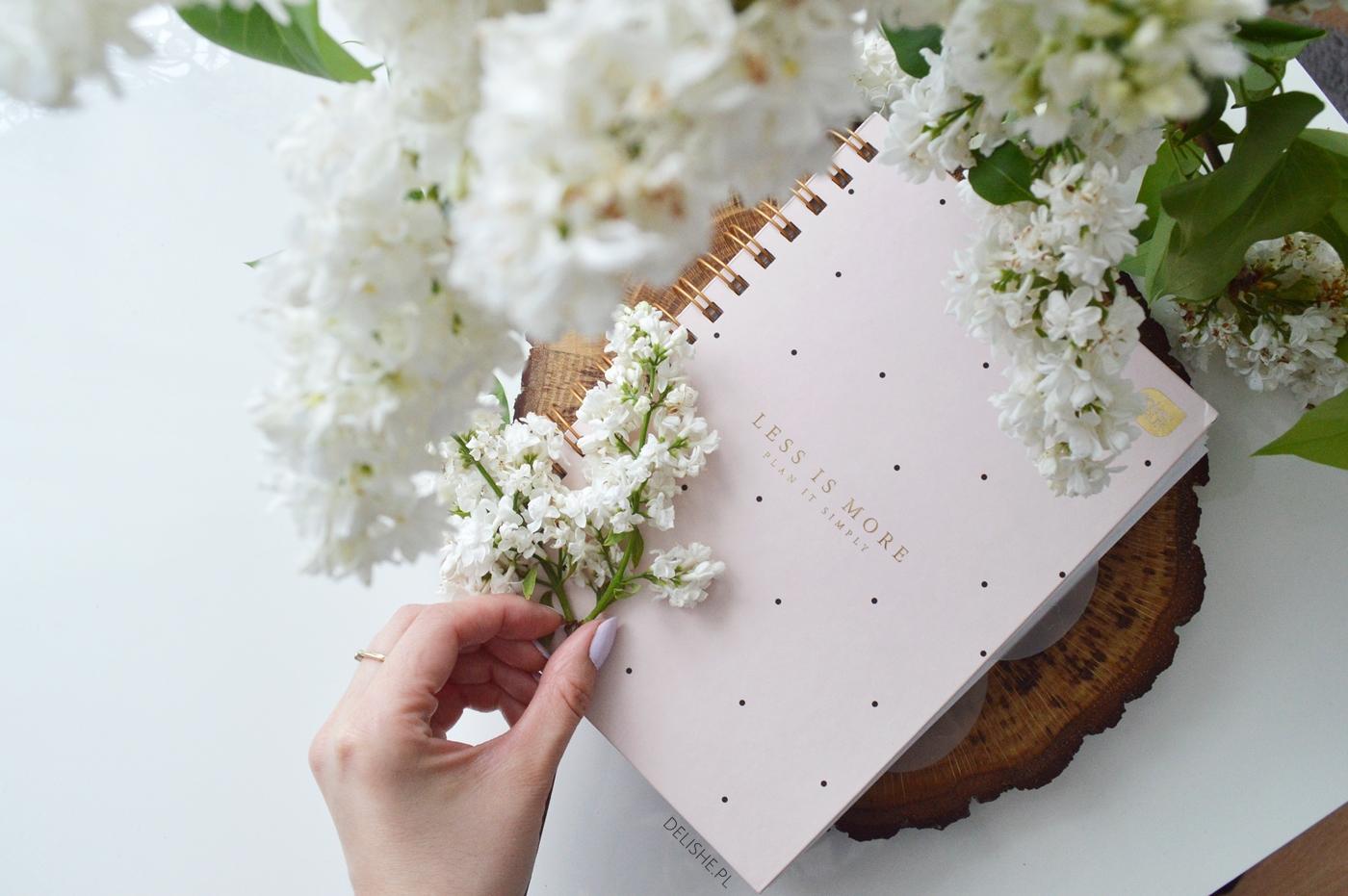 planner bullet journal biedronka