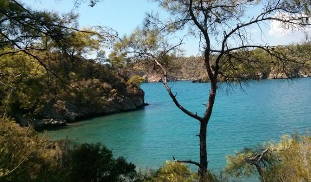 Katrancı Cove Fethiye