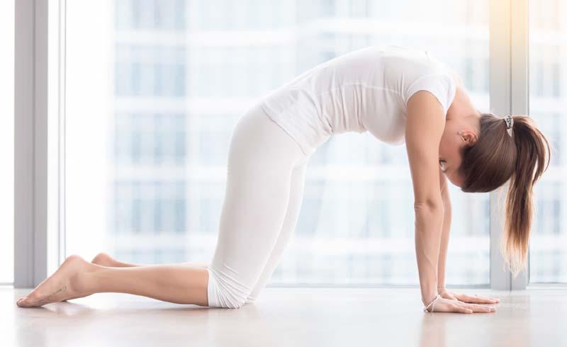 fibromyalgia, yoga