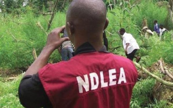 Military Officer Plants Drug In Brother's House, Reports To NDLEA