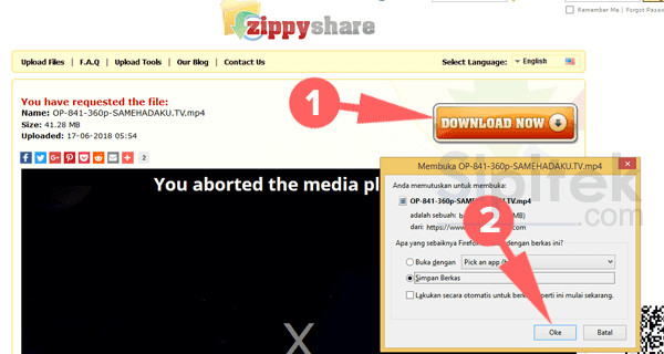 Download di Zippyshare