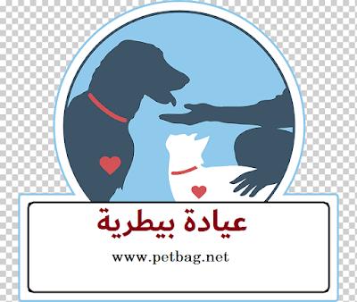 عيادة بيطرية - دكتور بيطري في الزيتون المطرية Pets Health Clinic