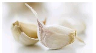 Gambar Bawang Putih Kating