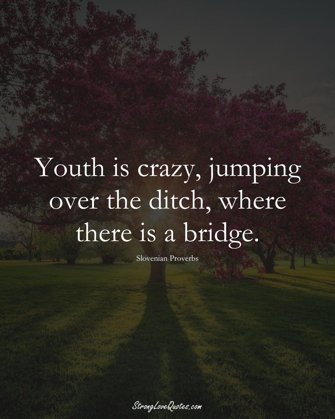 Youth is crazy, jumping over the ditch, where there is a bridge. (Slovenian Sayings);  #EuropeanSayings