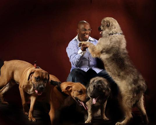 ohakim dogs