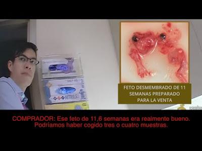 Ramona Treviño ex directora de Planned Parenthood denuncia industria satánica pedófila abortista #Katecon2006