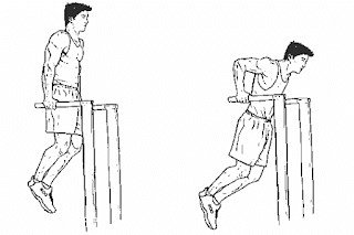 3. Bodyweight Dips 1 & 1/2