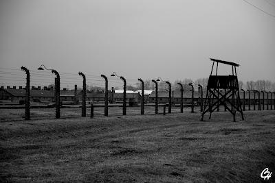 Bild från Auschwitz II Birkenau
