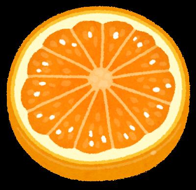 スライスされたオレンジのイラスト