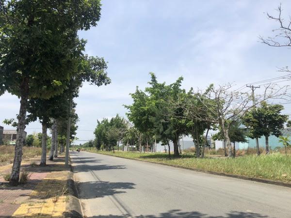 hạ tầng giao thông hoàn thiện . công viên cây xanh thoáng mát ảnh chụp tại dự án khu đô thị lợi bình nhơn, tân an