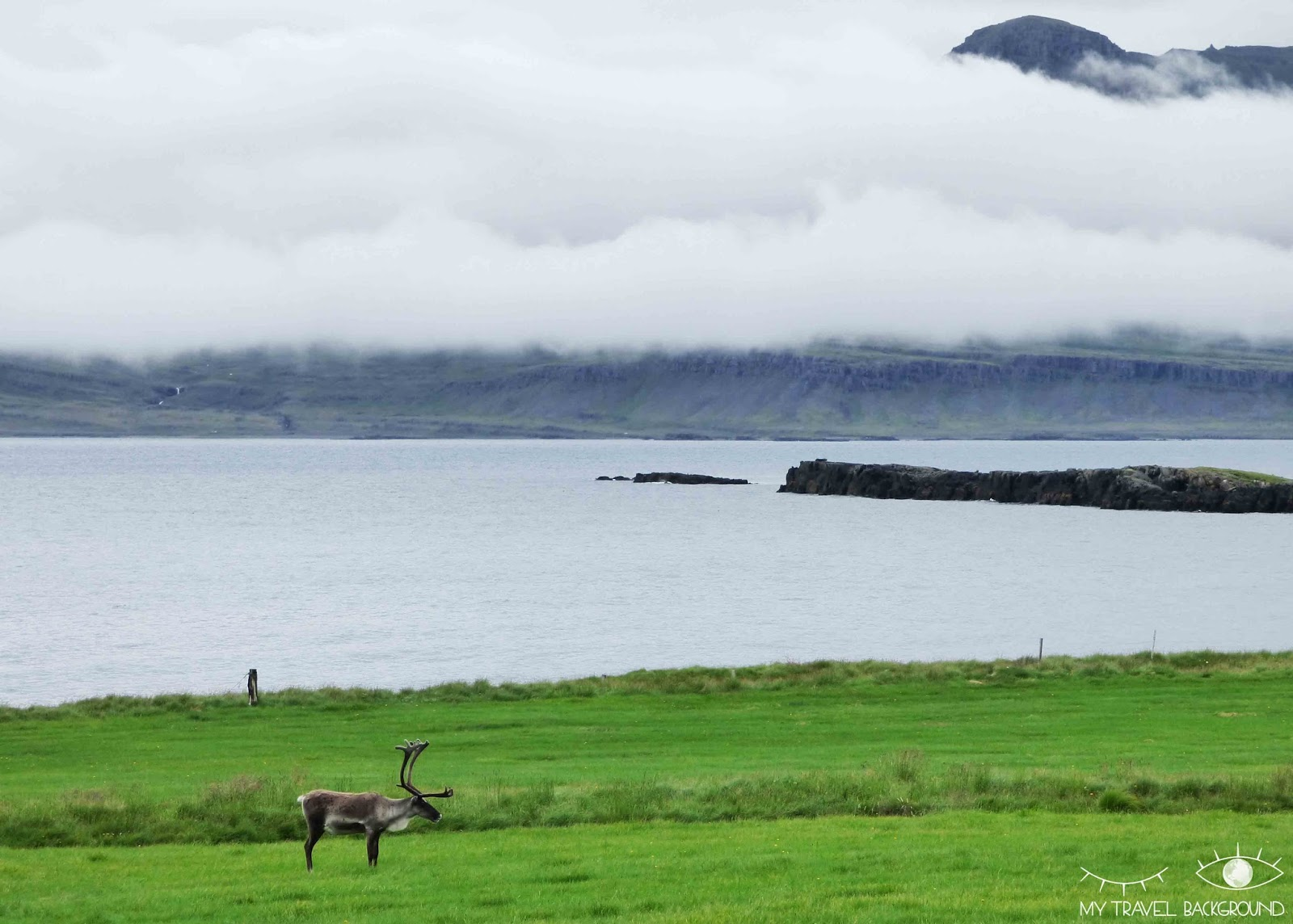 My Travel Background : Islande, en route vers les fjords de l'Est - Breiddalsvik