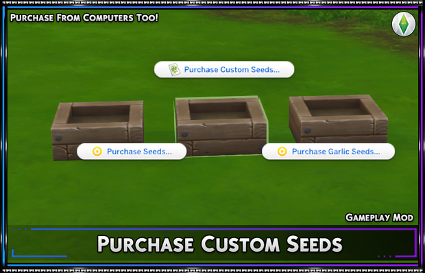 Purchase Custom Seeds