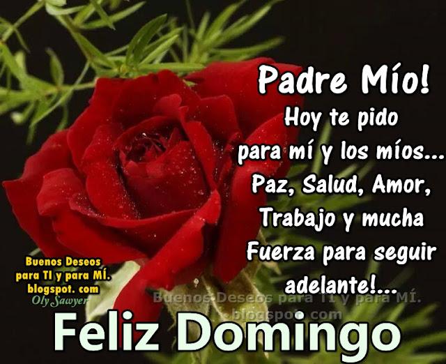 Padre Mío ! Hoy te pido para mí y los míos Paz, Salud, Amor, Trabajo y mucha Fuerza para seguir adelante!  FELIZ DOMINGO !