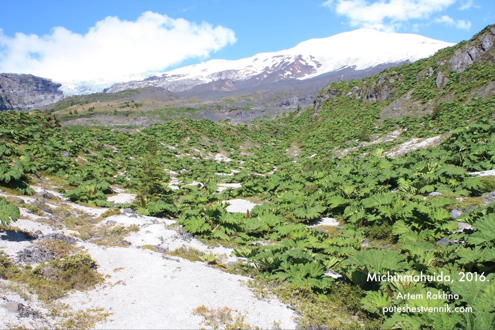Окрестности вулкана Мичинмахуида