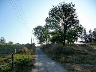 Браилов. Дорога на Москалёвку