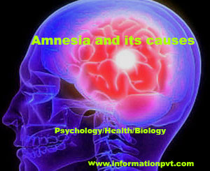 Amnesia and its causes