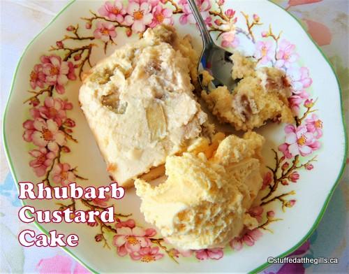 Rhubarb Custard Cake with Ice Cream