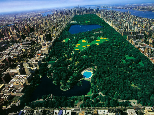 Un dia a Central Park