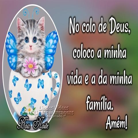 No colo de Deus,  coloco a minha vida  e a da minha família.  Amém!  Boa Noite!
