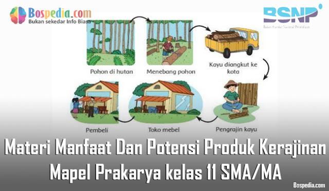 Materi Manfaat Dan Potensi Produk Kerajinan Mapel Prakarya kelas 11 SMA/MA