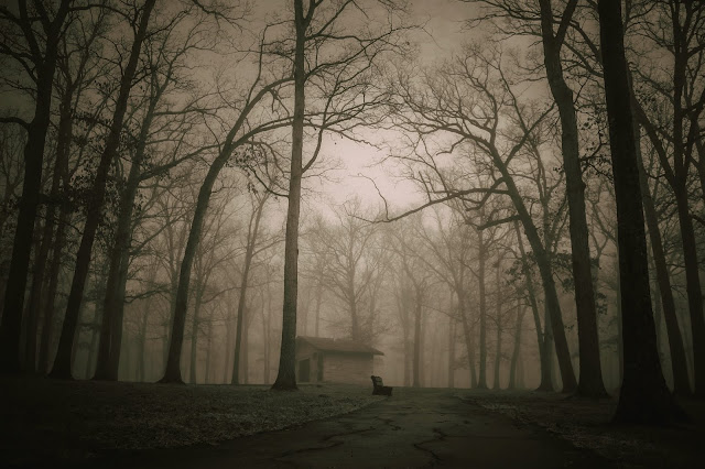 """The Haunted House """"STORIES LIBRARY"""""""