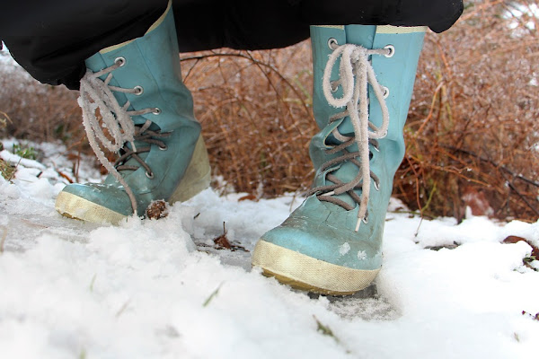 Blue WInter Boots in the Snow, by Tabeajaichhalt on Pixabay