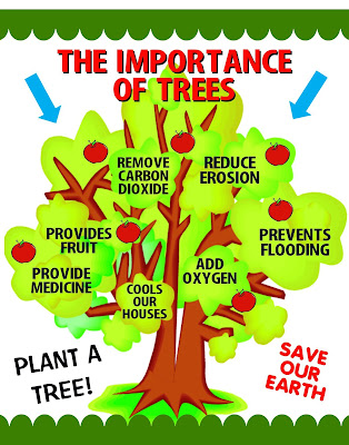 Benefit of Planting Trees- Importance of Trees in Our Life