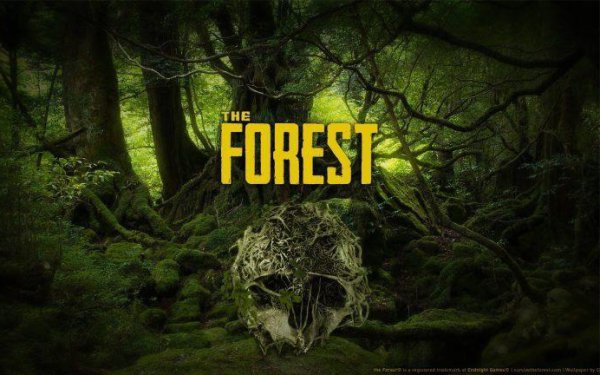 Best PC Survival Games The Forest