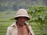 Pengertian Petani Gurem dan Problematikanya