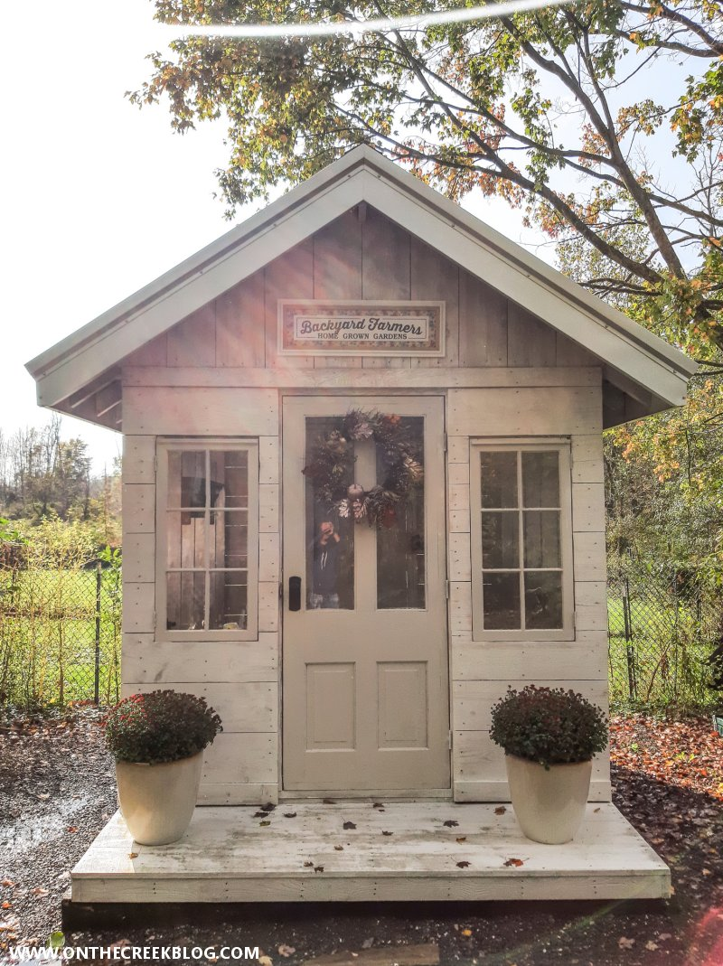 Greenhouse decorated for autumn | On The Creek Blog // www.onthecreekblog.com