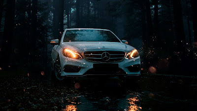 Forest, Trees, Mercedes, White Car, Facade